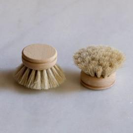Recambio para el cepillo compuesto